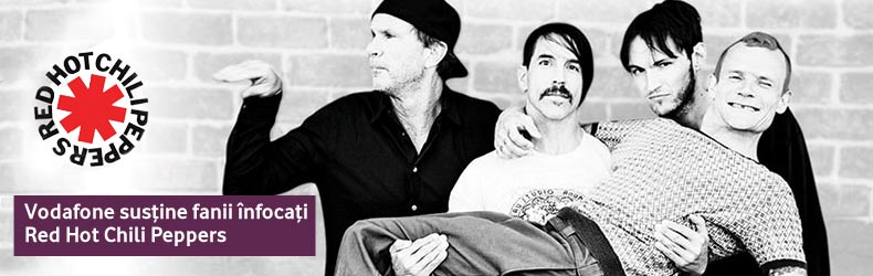 Red Hot Chili Peppers banner