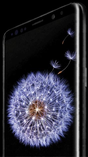 Galaxy S9   S9+